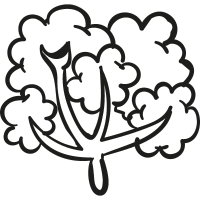 Leafy Tree vector