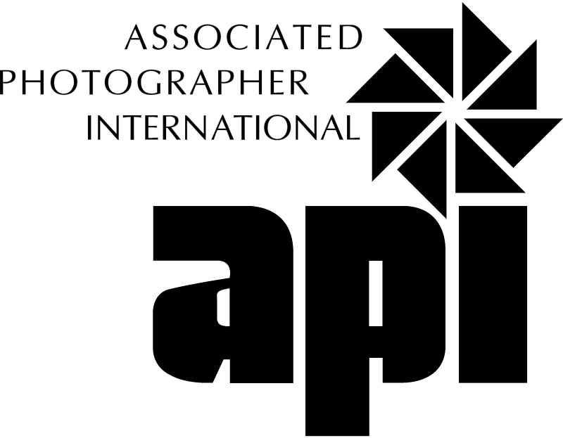 ASSOC PHOTOGRAPHER vector