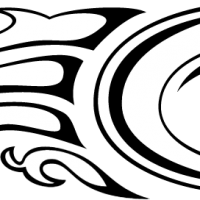 CABRINHA vector