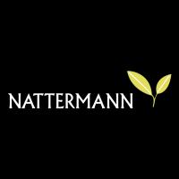 Nattermann vector