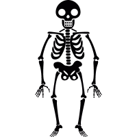 Smiling skeleton vector