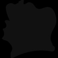 Cote D Ivoire black country map shape vector
