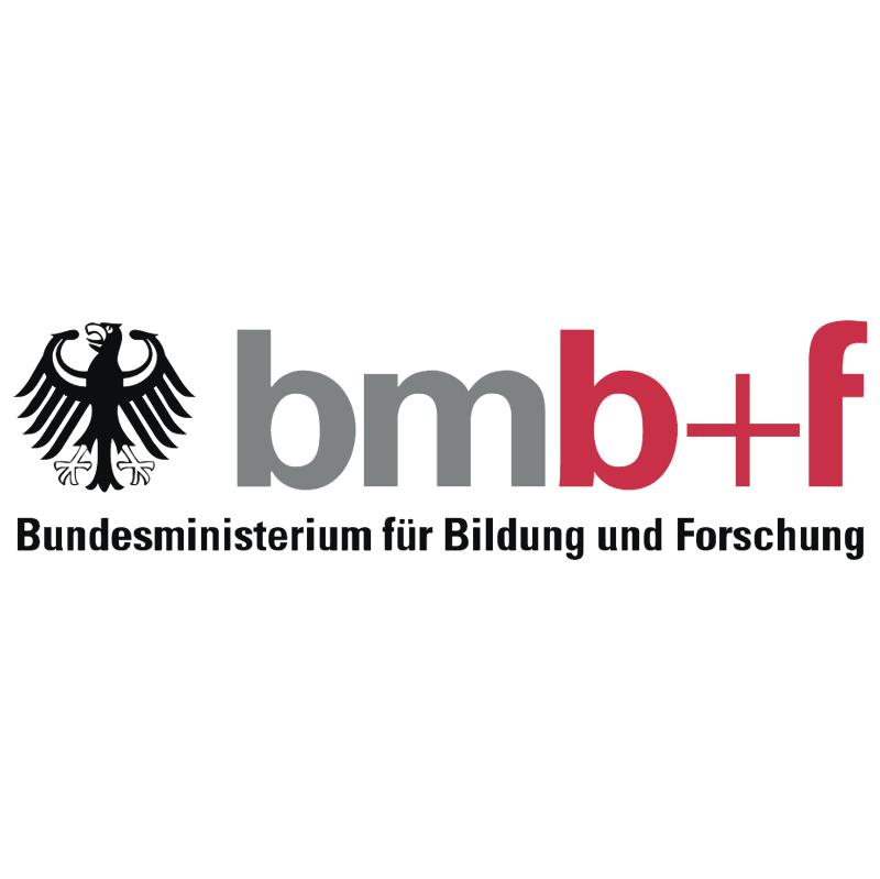 BMBF vector