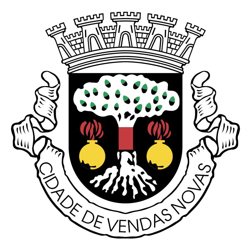 Brazao Vendas Novas vector