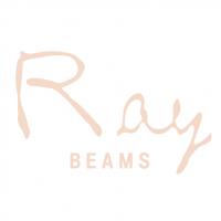 Ray Beams vector