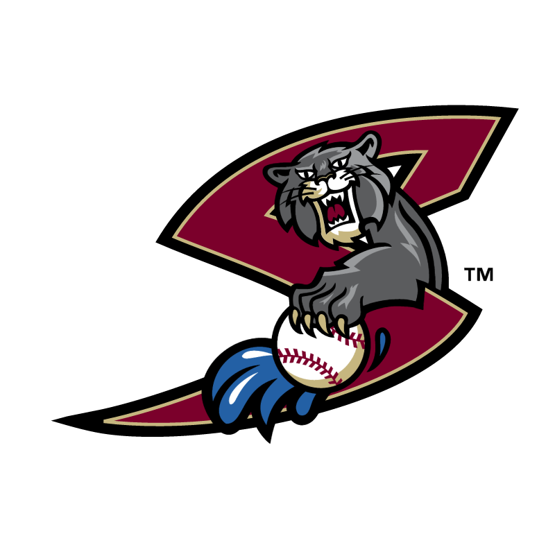 Sacramento River Cats vector