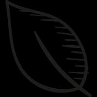 Park Leaf vector