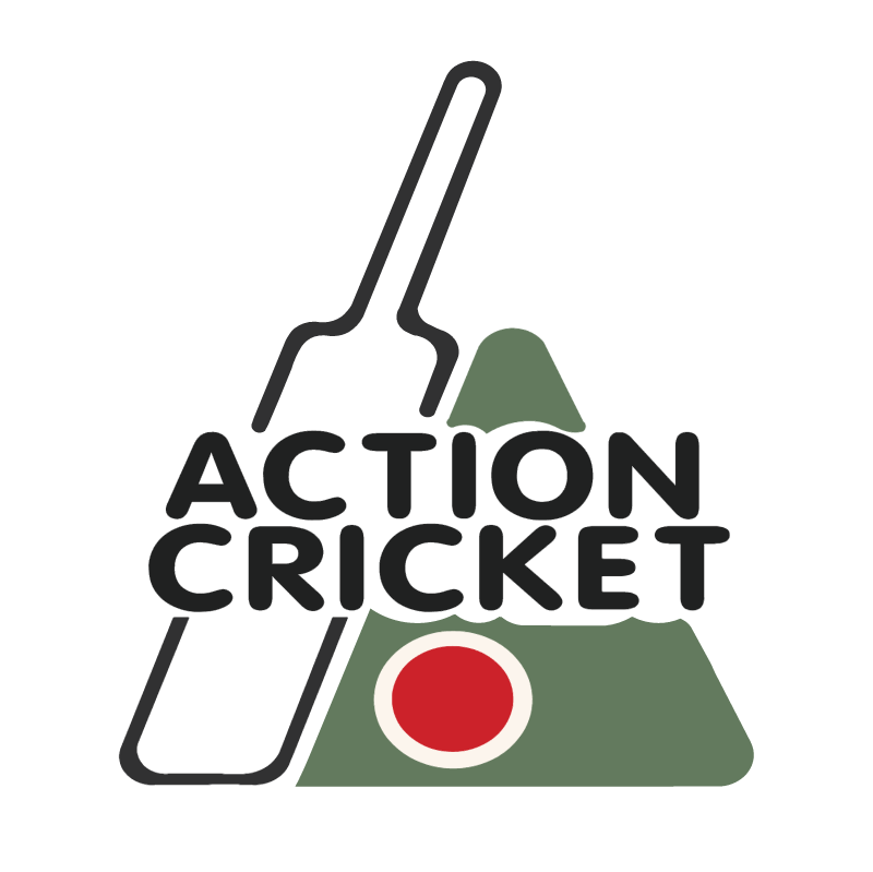 Action Cricket vector