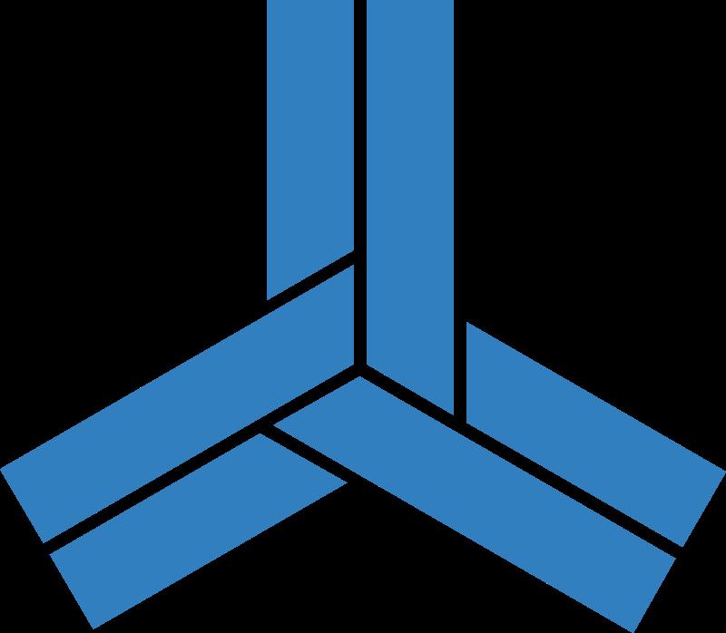 Alliance Semiconductor vector