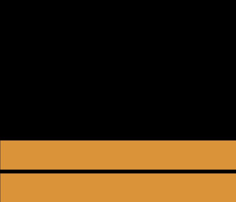 Budget logo2 vector