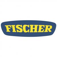 Fischer vector