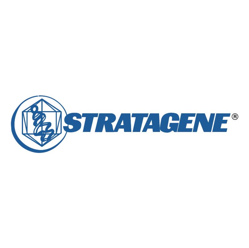 Stratagene vector