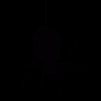 Hanging spider vector