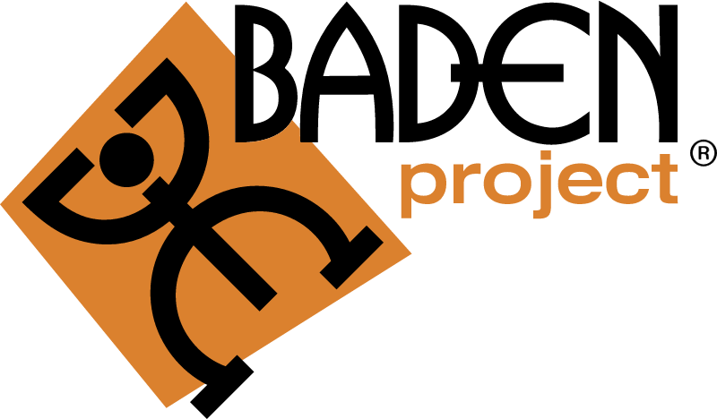 Baden project 27329 vector