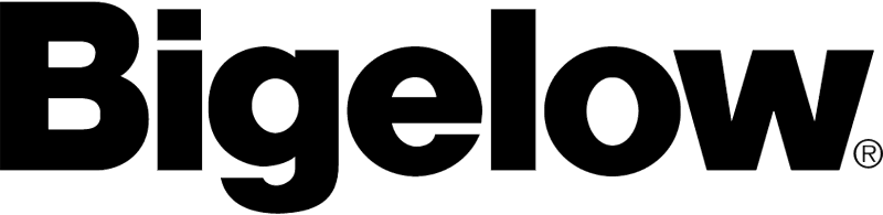 BIGELOW CARPET vector