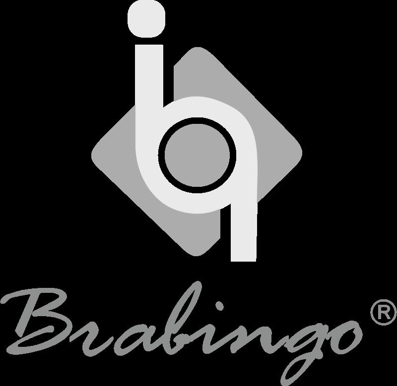 brabingo vector