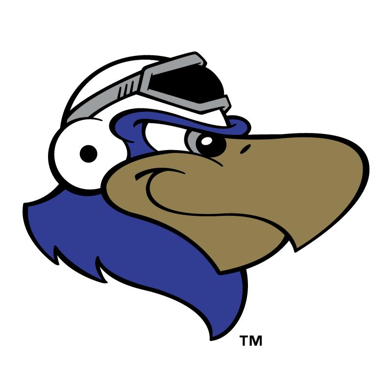 Lancaster JetHawks vector logo
