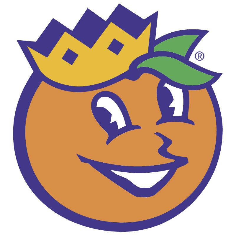 Orange Bowl vector