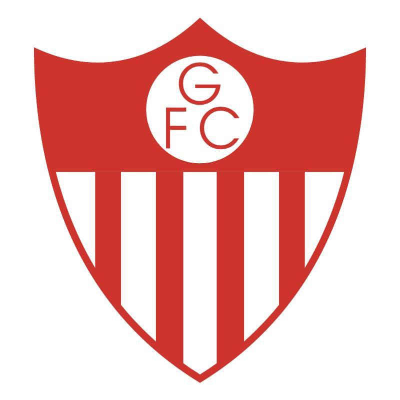 Guarany Futebol Clube de Bage RS vector