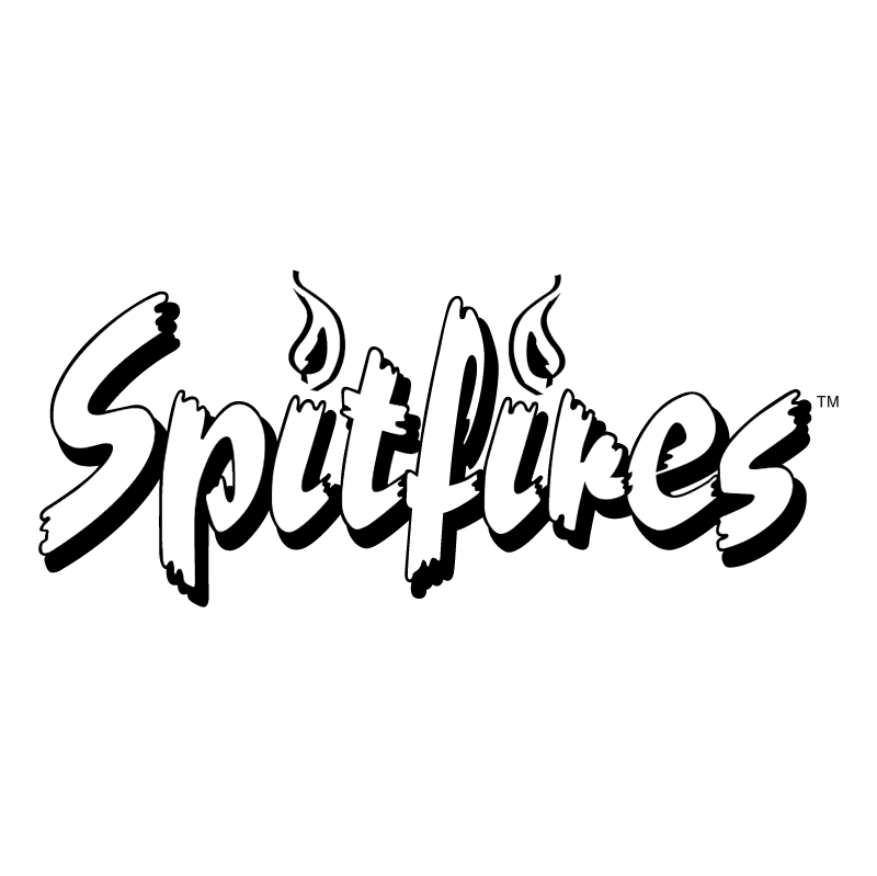 Spitfires vector