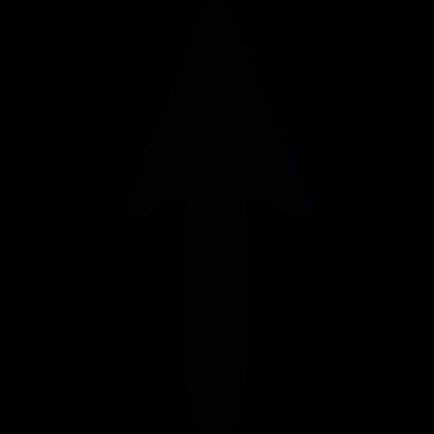 Arrow pointing north vector logo