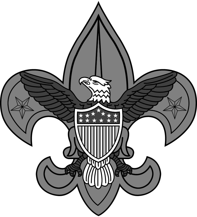 Boy Scouts 2 vector
