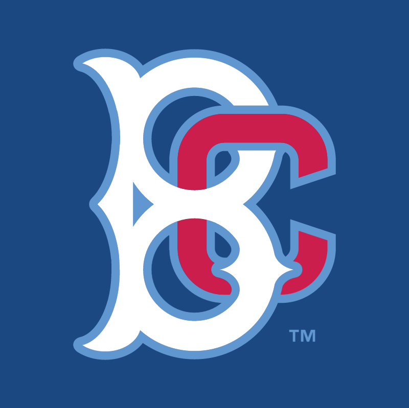 Brooklyn Cyclones vector