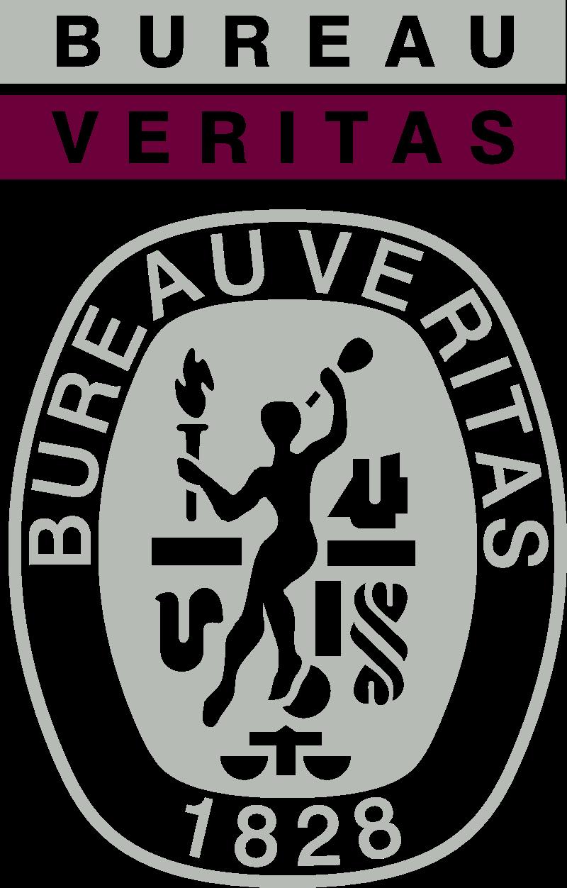 Bureau Veritas logo vector logo