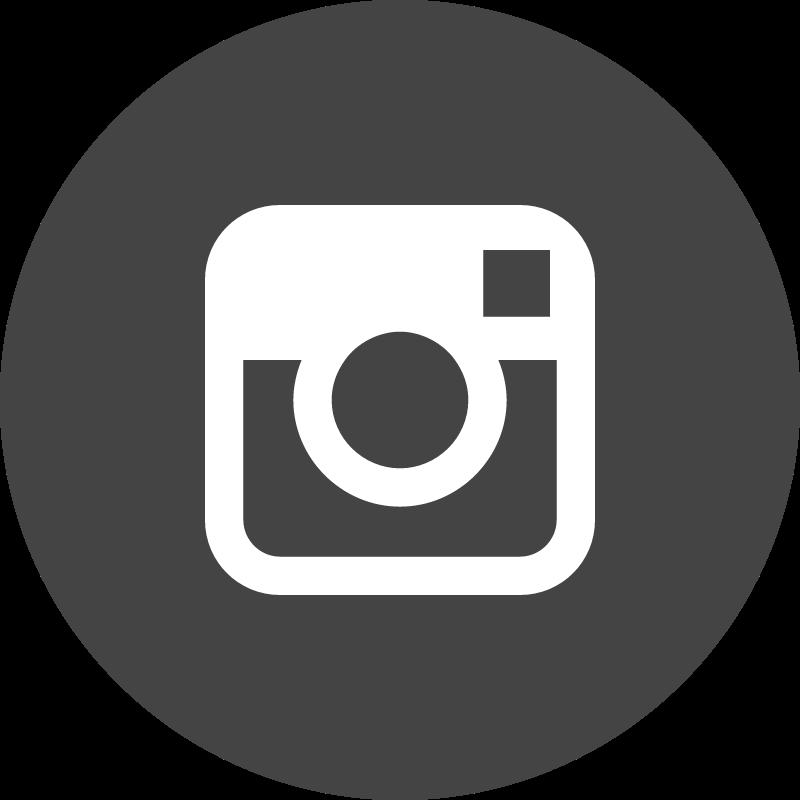 Instagram circle vector