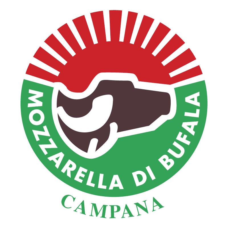 Mozzarella Bufala Campana vector
