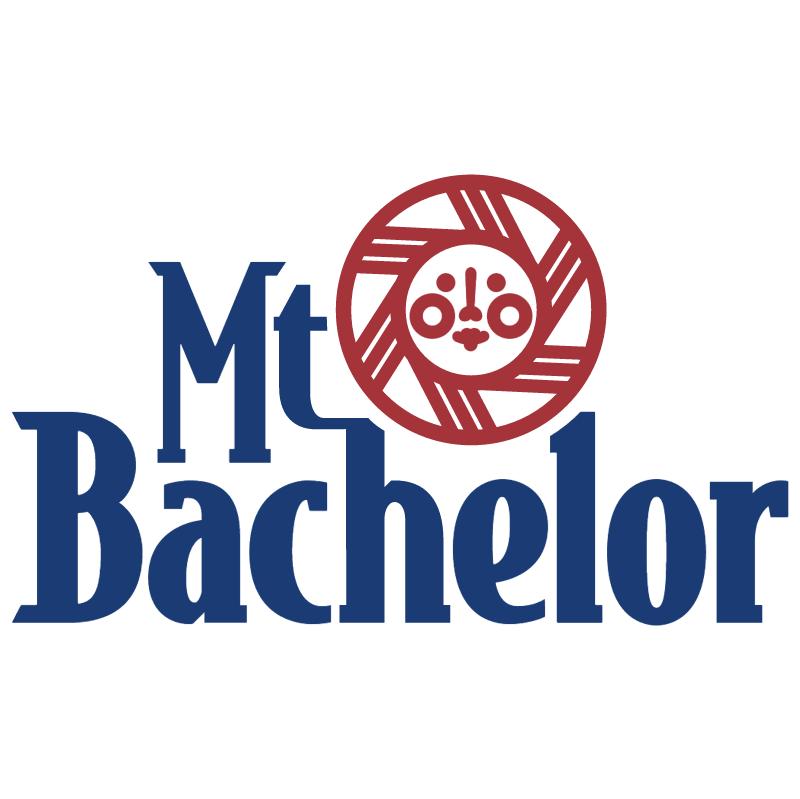 Mt Bachelor vector