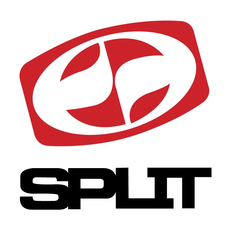 Split vector