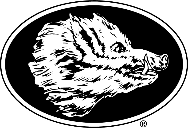 Boars Head vector