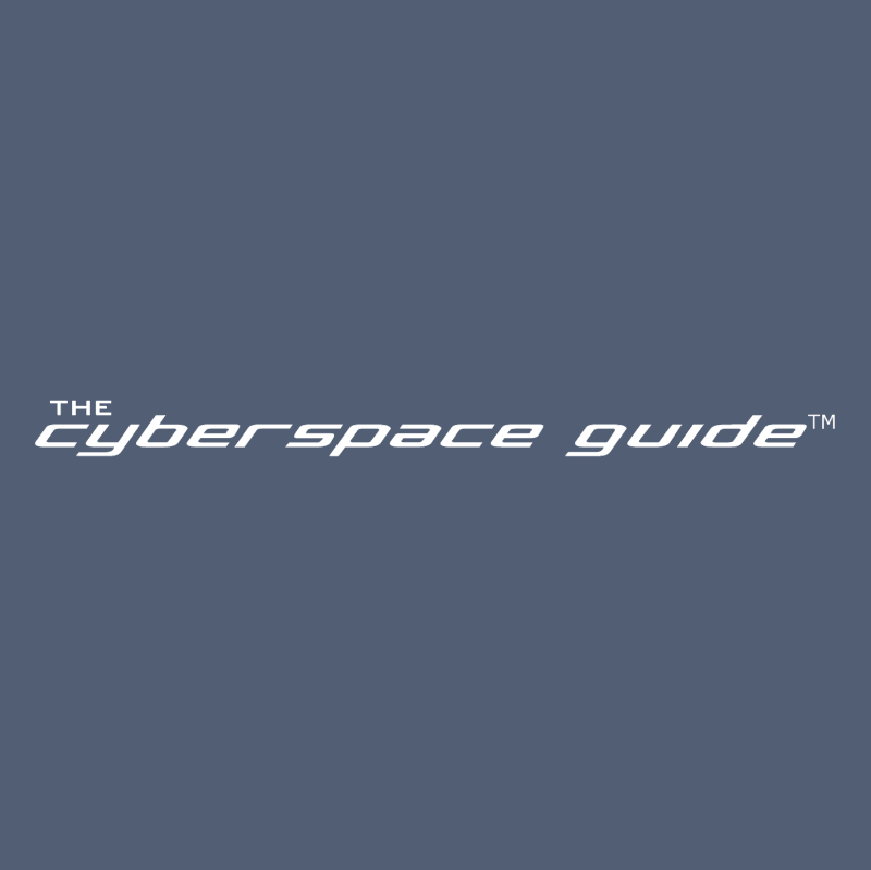 Cyberspace Guide vector