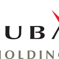 Dubai Holding vector