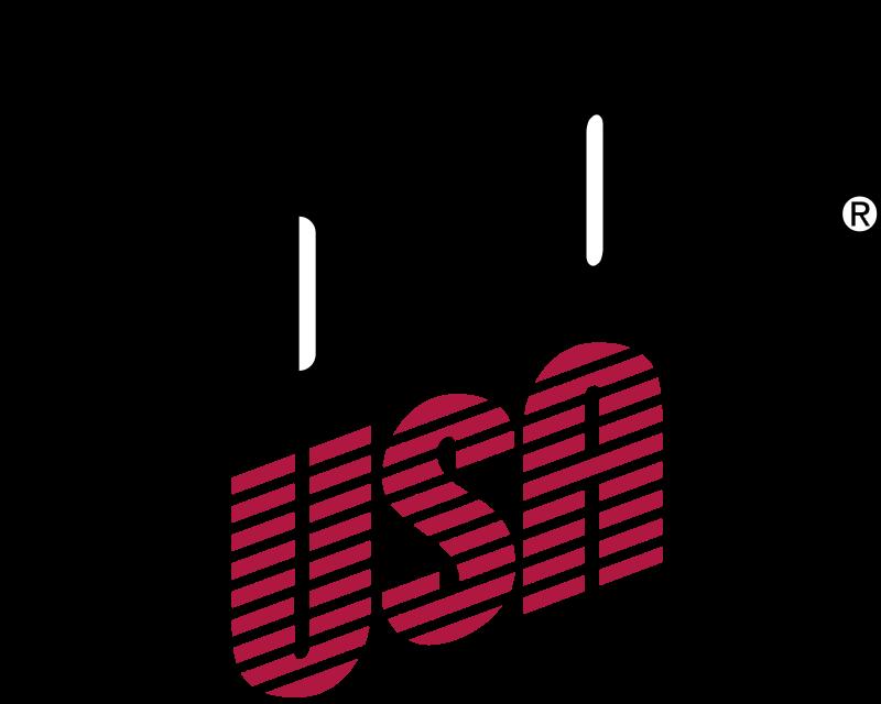 Gibson USA vector