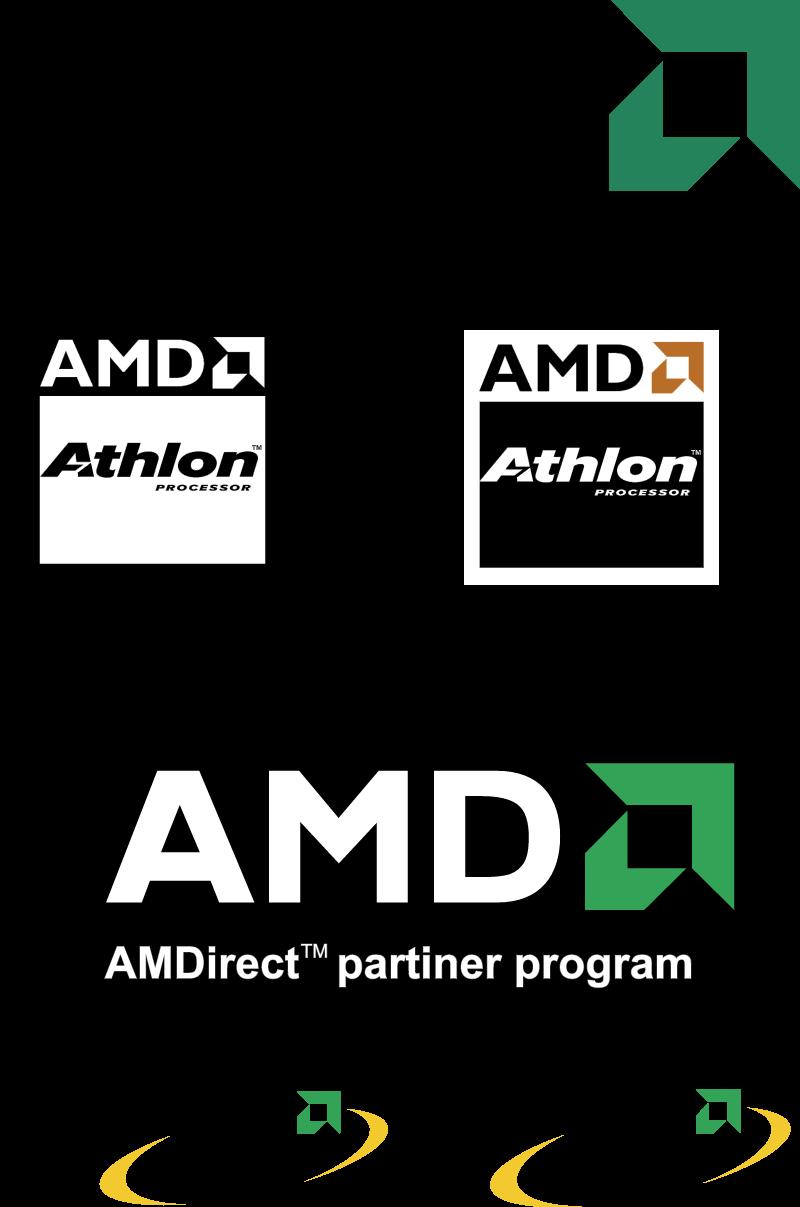 AMD2 vector