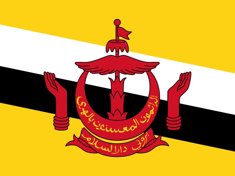 Flag of Brunei Darussalam vector