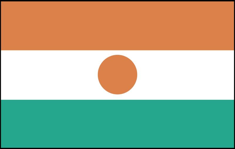 niger vector logo