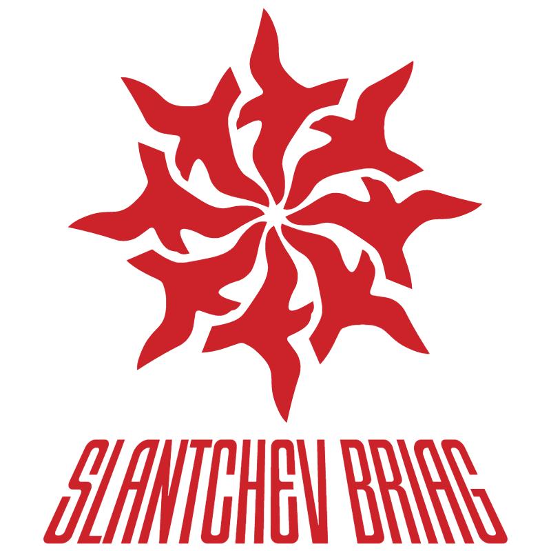 Slantchev Briag vector