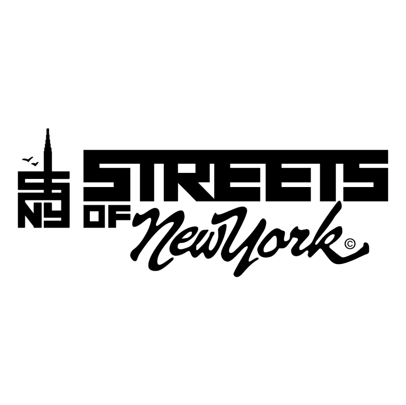 Streets of New York vector