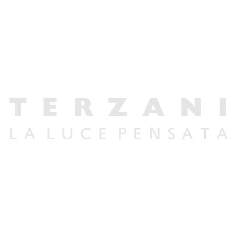 Terzani vector