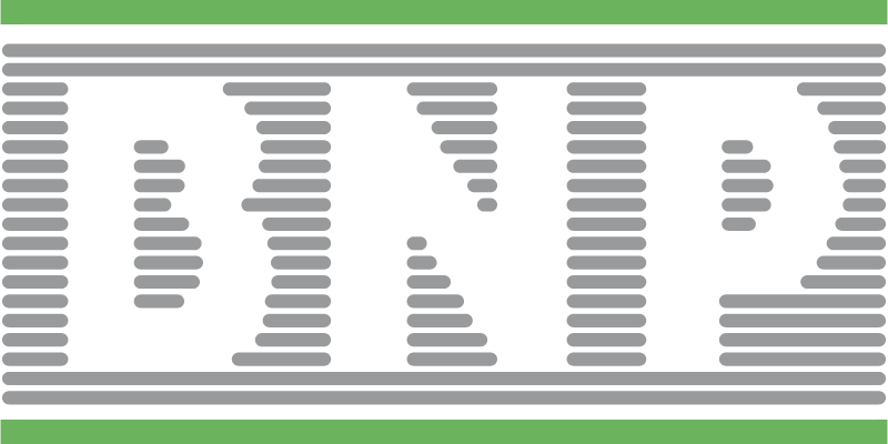 BNP vector