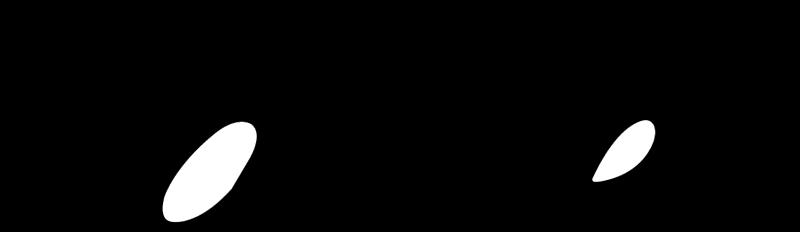 CARTIER vector