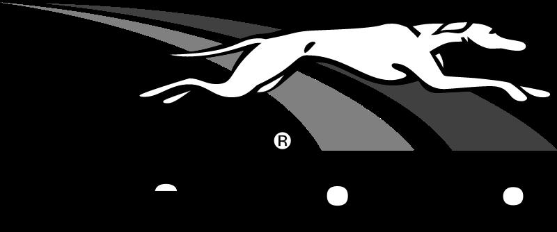 Greyhound vector