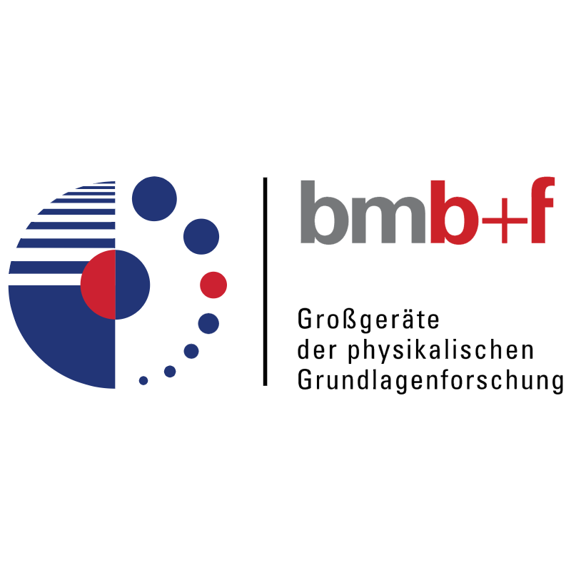 BMBF 30650 vector