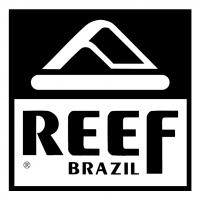 Reef Brazil vector