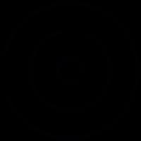 Circular maze vector