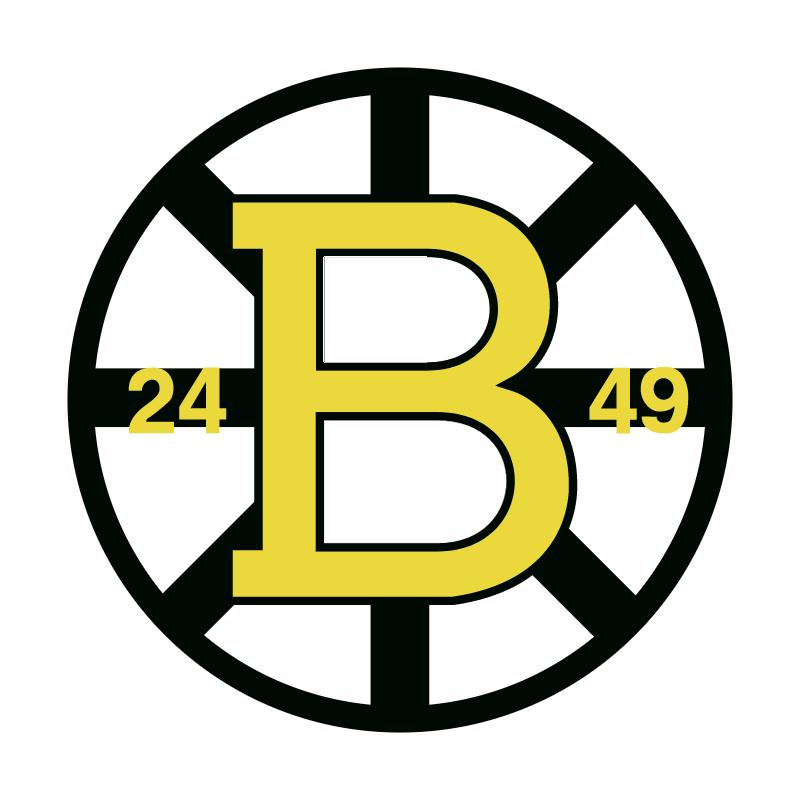Boston Bruins vector