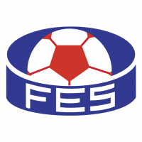 Federacao de Futebol do Estado do Espirito Santo ES vector
